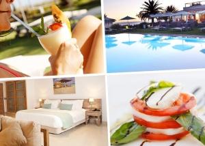 portafolio-artislas-branding-diseno-grafico-web-gecko-beach-club-formentera-portada