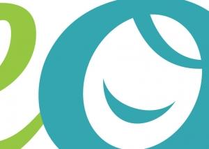 portafolio-artislas-branding-diseno-grafico-web-tseotse-portada